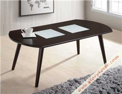 EZRA (COFFEE TABLE)